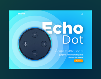 Amazon Echo Dot Landing Page