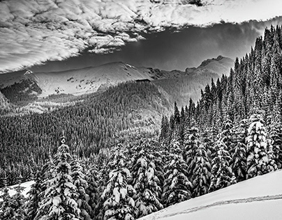 Winter in B&W - part I