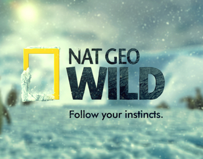NatGeo Wild - Penguin Palooza Weekend Stunt