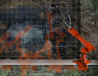 Robotic Autopsies of the Earth