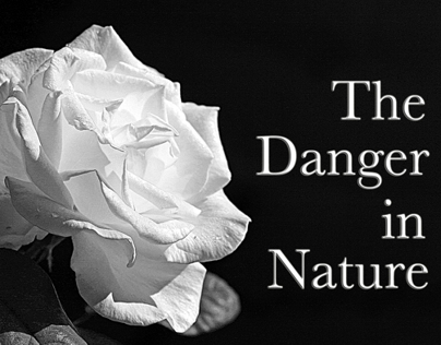 The Danger in Nature