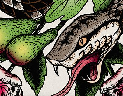 Snake & Skull Illustration