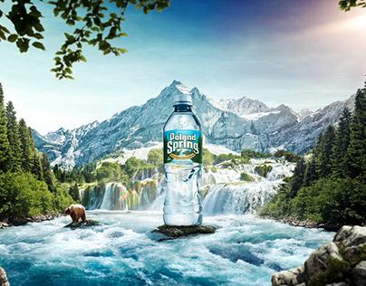 Poland Spring »Natural Spring Water«
