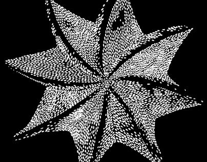 Кактусы #2   Cactus #2