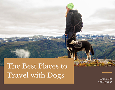 The Best Places to Travel with Dogs