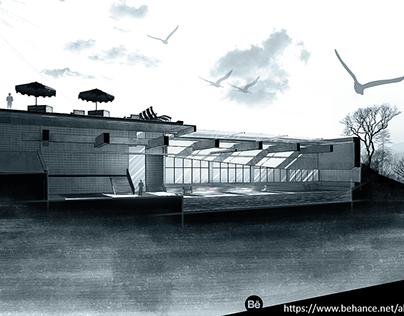 Architecture Villa Section Render