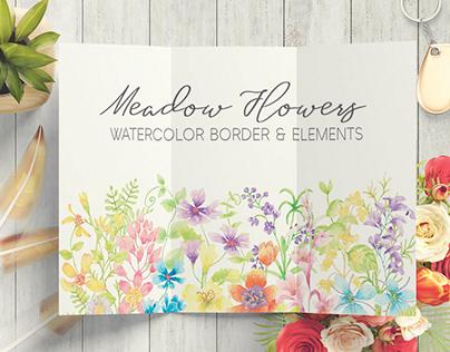 Meadow flowers watercolor border plus elements