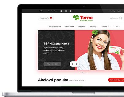TERNO web redesign