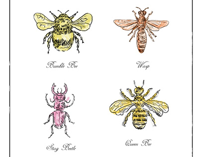 Bumble Bee, Wasp, Stag Beetle and Queen Bee Vintage