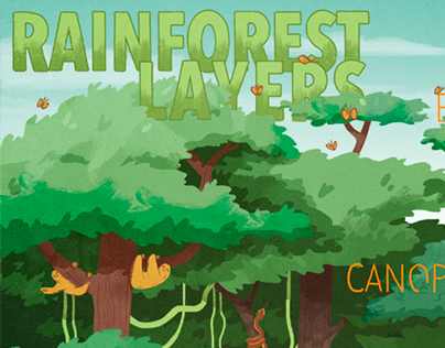 Map of the Rainforest