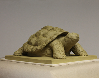 Turtle - clay sculpture