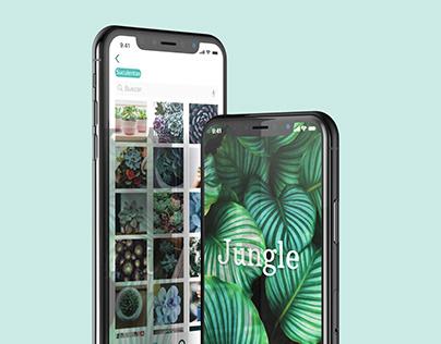 proyecto Jungle