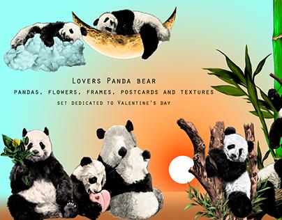 Lovers Panda bear