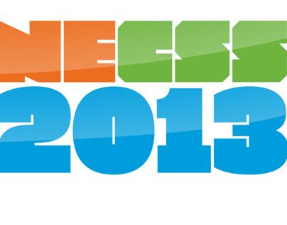 NECSS 2013 / Concept & Implementation