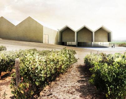 Winery in Samaniego