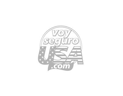 VOY SEGURO USA