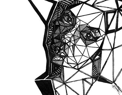 Triangular portrait #2