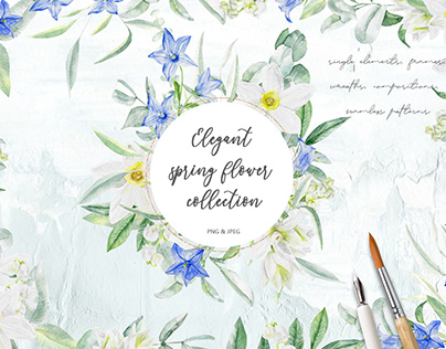 Elegant spring flower collection