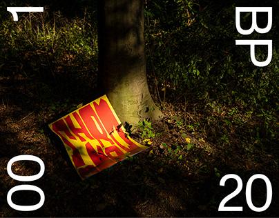 Shrooms — Poster / Type Design