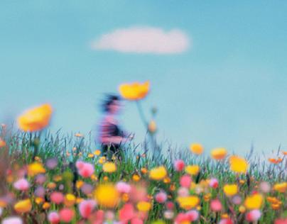 Hayao Miyazaki, Are You There?