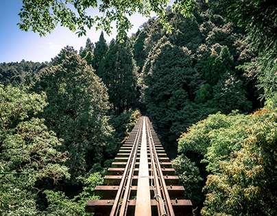 Ali-Shan Railway Trekking, Taiwan 眠月線