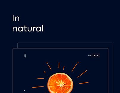 LN NATURAL   COSMETICS   WEB DESIGN