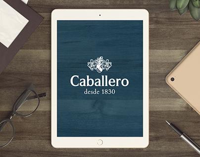 Luis Caballero website (pitch)