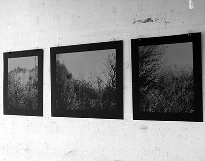 Foto's Stefan Vanthuyne / Screen Prints Marijke Loozen