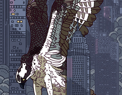 Diving Osprey - The Urban Forest