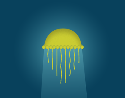 The jellyfish and the sun