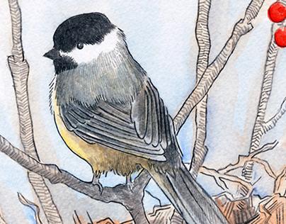 Card Illustration: Mama Chickadee