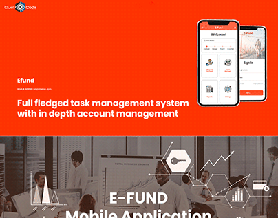 Case Study for Efund a Management/Accounting Software
