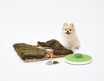Gosewalk : nosework toys for dogs