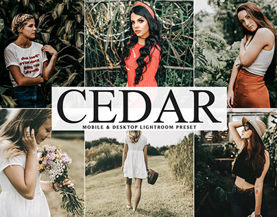 Free Cedar Mobile & Desktop Lightroom Preset