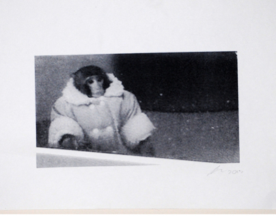 Ikea Monkey Screen Print