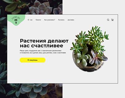 Green Friend   Online shop of indoor plants