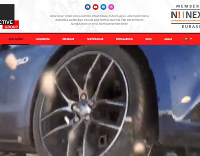 Website for a company that sells auto parts