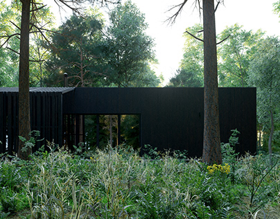 HOTEL-HOUSE IN FOREST
