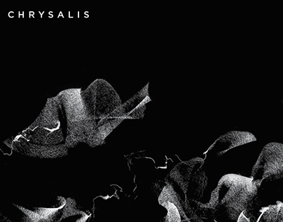 chrysalis module 5 Crisalys is a software synthesizer characterized by a powerful audio engine which can work up to 192khz the three oscillators are driven by custom waveforms designed specifically to grant top quality sound in any situation.