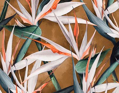 ESTAMPA   White Bird Of Paradise