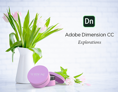 Packaging Explorations in Adobe Dimension CC