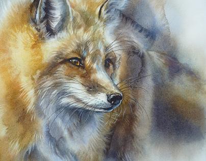 Fox. Watercolor.