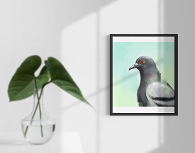 Oil Painting - Pigeon