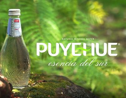 Agua Mineral Puyehue - Sana Envidia
