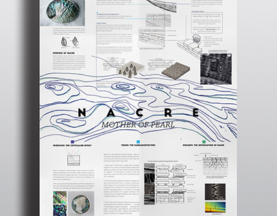 Nacre / Infographics Poster