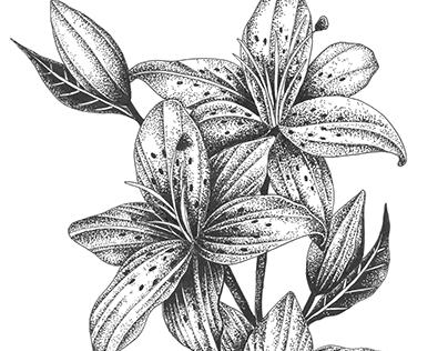 Flower dotwork