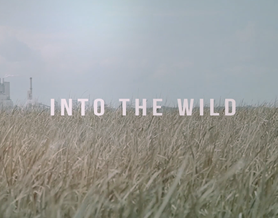Into The Wild Title Sequence (WIP)