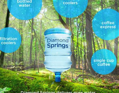 Diamond Springs Website Design