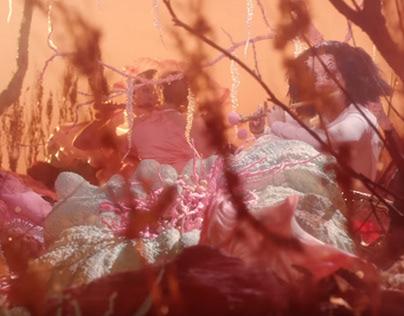 "Orchids - Flower sculptures for Björk's ""Utopia"""