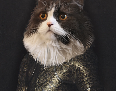 Figaro the royal cat